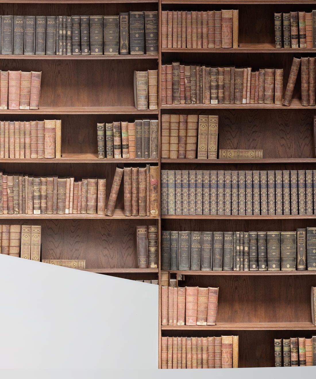 Bookshelf Wallpaper Realistic Library Design Milton King