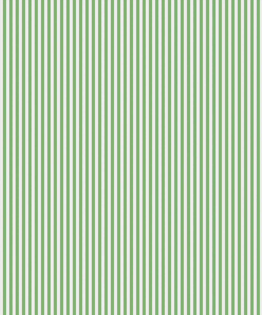 Candy Stripe Green