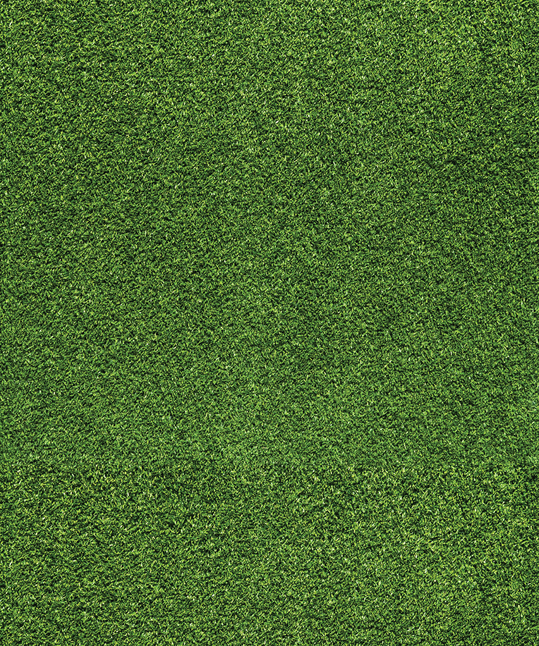 Artificial Turf Wallpaper