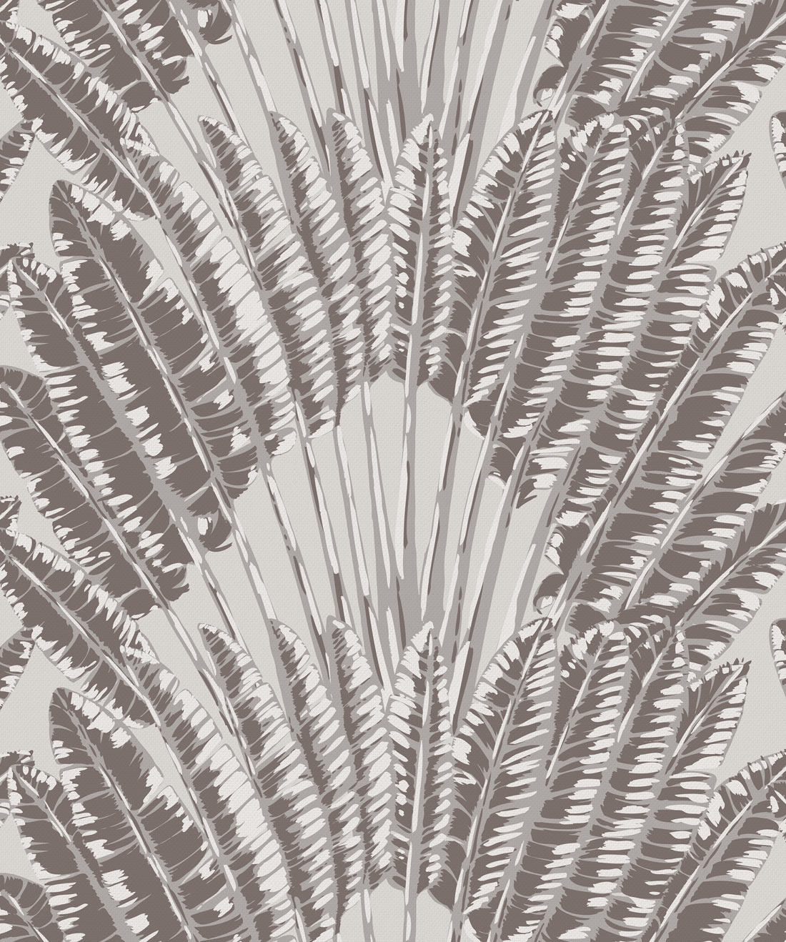 Feather Palm Wallpaper