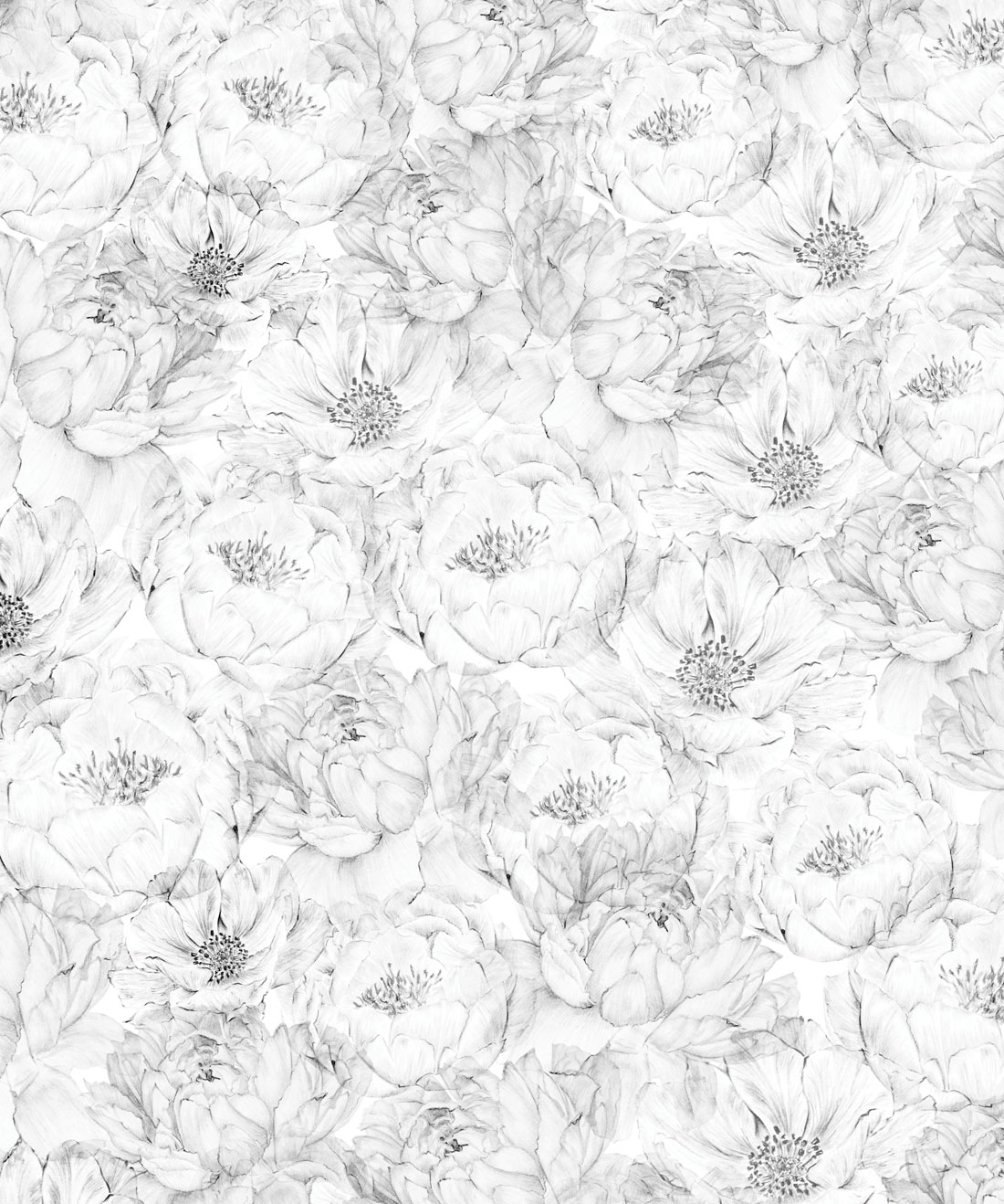 Peonies & Anemones (Large) Wallpaper (Two Rolls)
