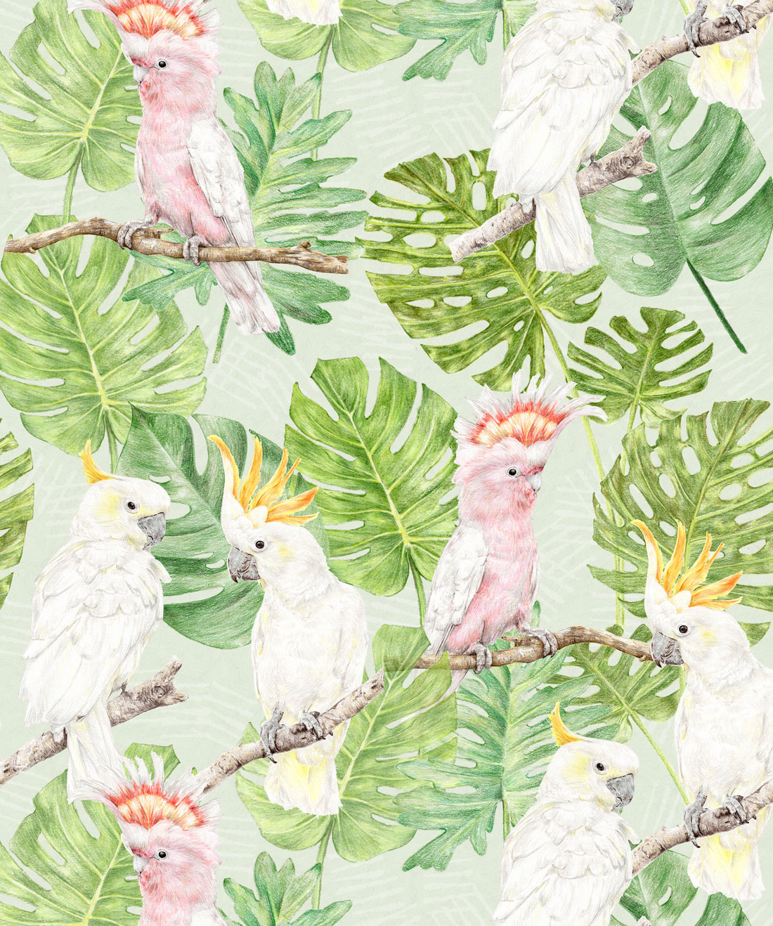 Tropical Cockatoos Wallpaper