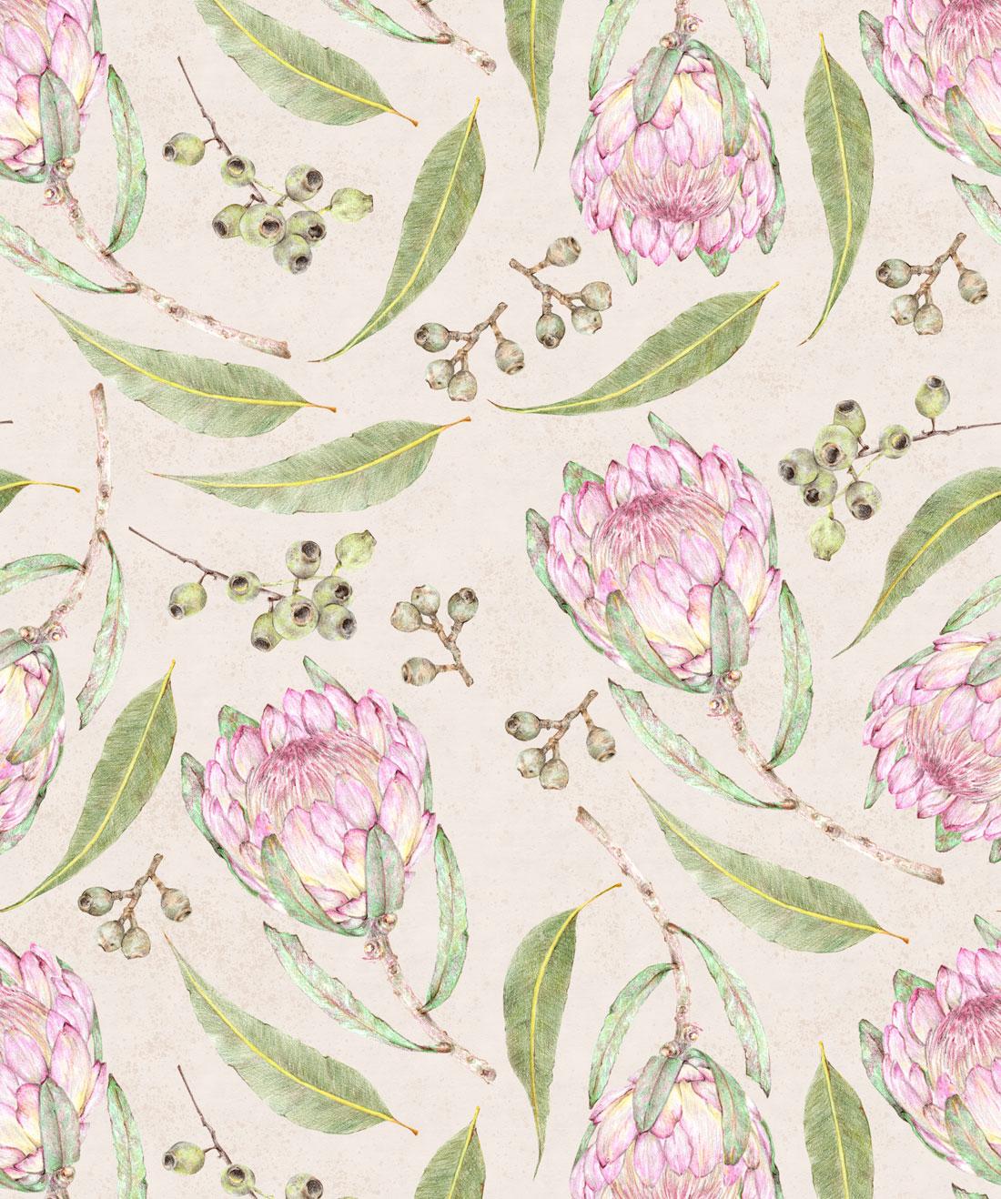 Proteas Gumnuts Wallpaper