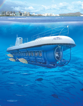 30-minute helicopter tour and submarine adventure