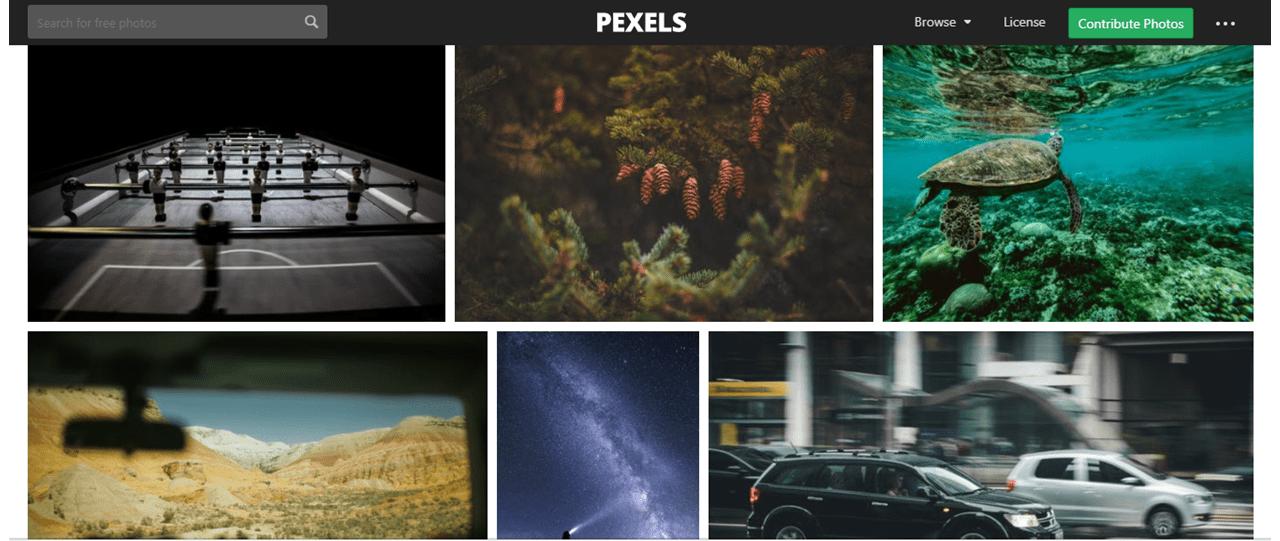 Melhores Bancos de Imagens Gratuitos - pexels