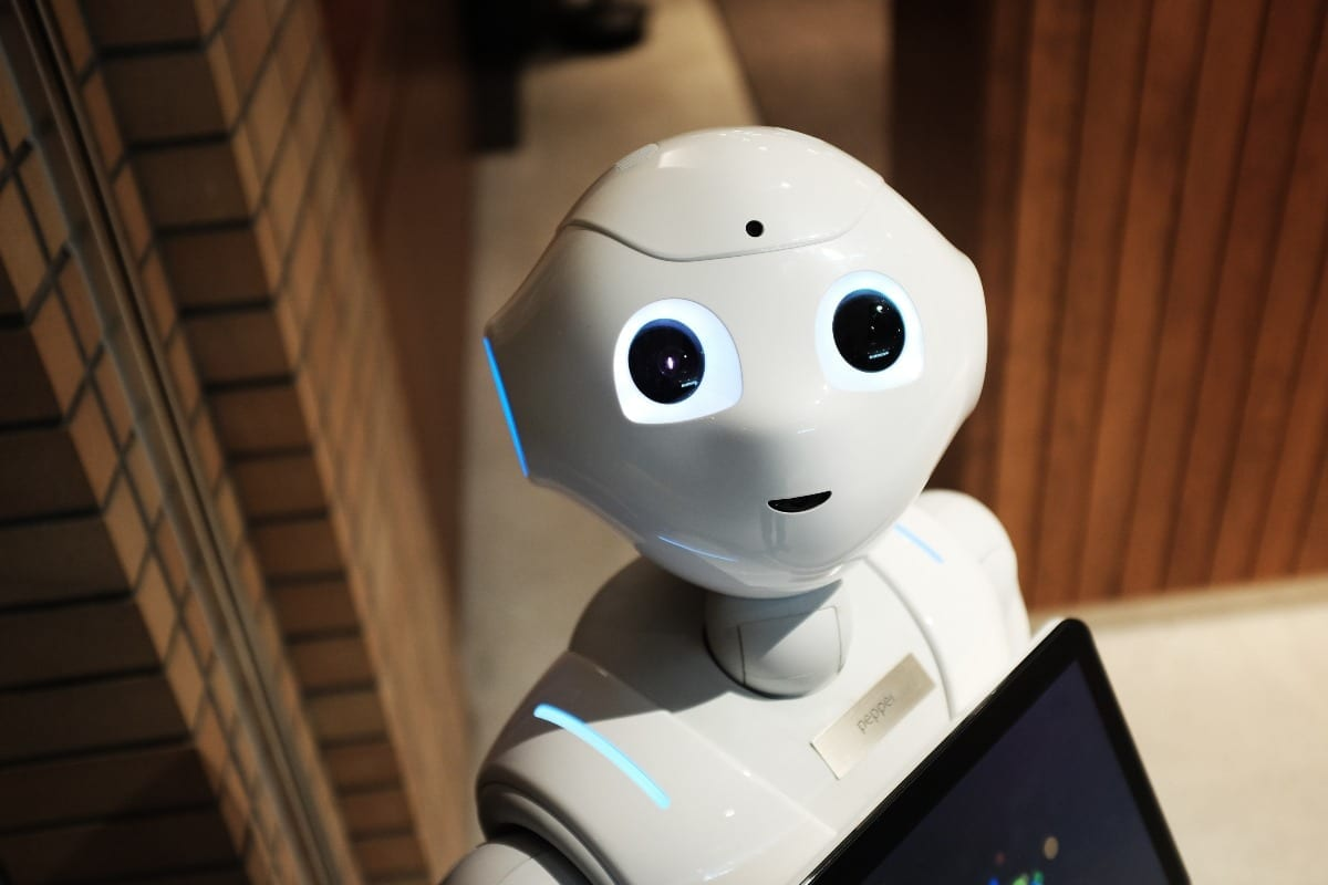 chatbot - bot