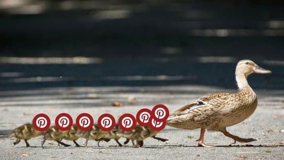 como conseguir seguidores no pinterest-
