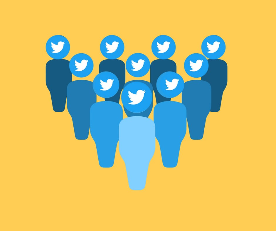 seguidores no twitter