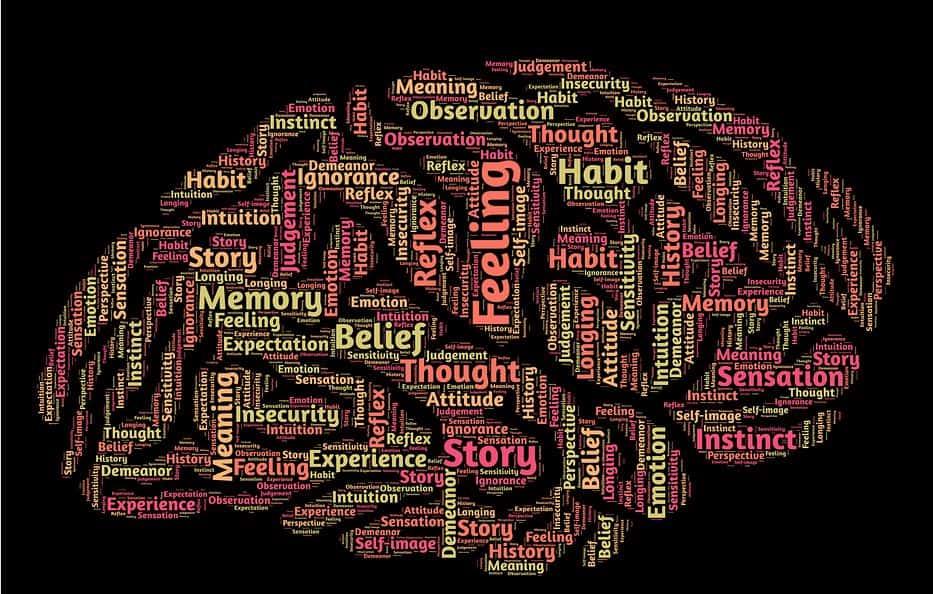 cérebro gatilhos