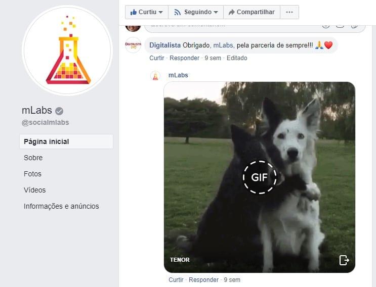 Como usar gifs: imagem de uma conversa na página do Facebook.