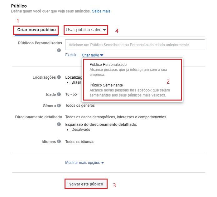 Facebook Ads: imagem da tela de público do Gerenciador de Anúncios do Facebook