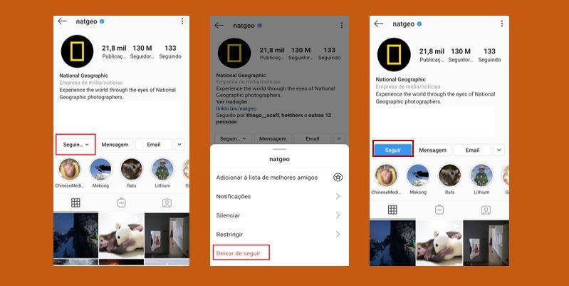 Deixar de seguir no Instagram: imagem de três telas do perfil National Geographic no Instagram, mostrando o passo a passo de como parar de seguir.
