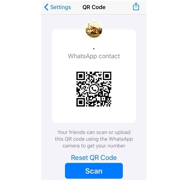 Novidades do WhatsApp: imagem da tela do aplicativo om um QR CODE