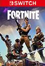 Fortnite Online Tournament