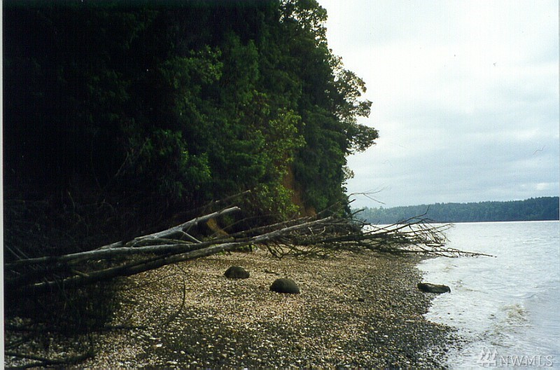 Ready to Build your own Paradise with a View of Oyster Bay and Mt. Rainier from this amazing waterfront property centrally located near HWY 101! Features include: 200' of medium bank waterfront, partially cleared (although overgrown a bit now), driveway installed and ready to use, Geo-Tech report & County Site Review completed in 2007, No wetland delineation study required according to County Site Review, plenty of privacy from trees lining the edges of property & a quick commute to Olympia!