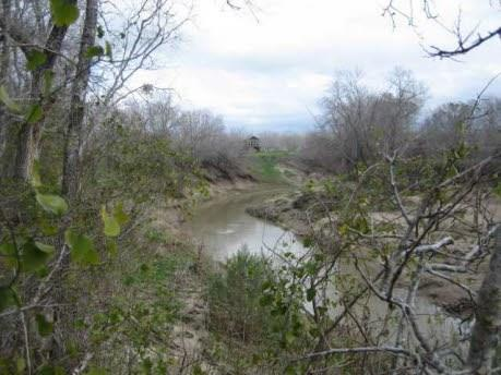 Only 55 minutes to Austin, 40 minutes to Round Rock, 25 minutes to Taylor. Beautiful river property!  Approx. 3044' of San Gabriel river frontage.  Brushy Creek pools into San Gabriel river at southern tip of property.  Water wll and electricity on property.  Open meadow with mature pecan trees, various varieties of fig trees and Jujubee trees, and native trees along the river.