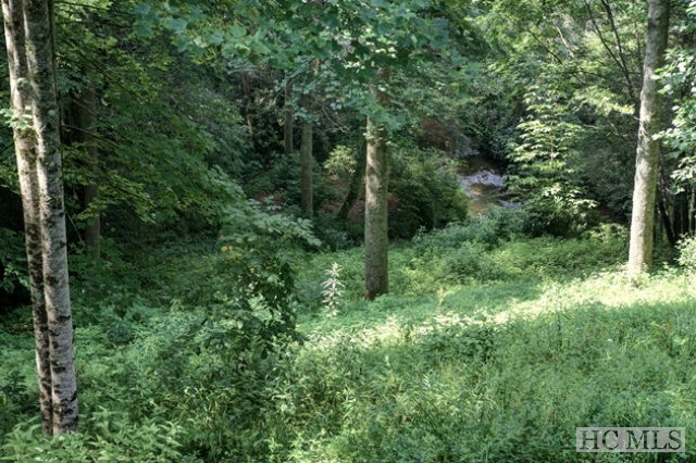 Extraordinary waterfront property within walking distance to town with a waterfall, frontage on Mill Creek, and easy access from Foreman Road. 3 bedroom septic permit and town water.  Trail to house site, house site and view of waterfall and Mill Creek are all cleared. Ideal location for building that perfect mountain getaway!