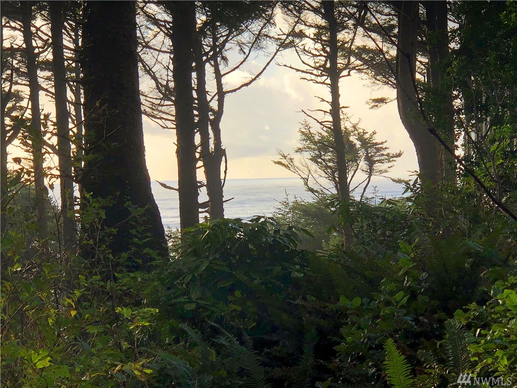 Awesome oceanfront property in the best location you will find anywhere on the Washington Coast. Set in an old growth rain forest and up on a hill in Iron Springs private gated community. Property features paved road access, community water, and power is up to the property line and ready to hook up. This lot will require a septic tank to build. Beautiful community beach access trail is also close by.