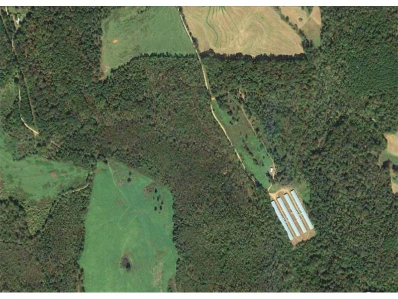 56.8 acres with over 1,500 feet of road frontage in Banks Co just NW of Homer GA and less than a mile from Hwy 441 and just a few miles to agricultural, residential and hunting area.Very close to Homer, Baldwin, Cornelia, Commerce, Gainesville, Athens. A great opportunity to live in nature and have a short commute to work. Equal distance to 365/i-985 and I-85. Share the property with a friend or family and each have 28 acres of your own! There is plenty of road frontage to divide a few times.