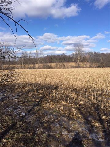 Great commercial property located on Parker Road between Jackson Road and I-94 with over 1000 ft of frontage on Parker Road and over 1300 ft of freeway frontage.  Zoned IRP.  Gently rolling land with the majority comprised of open field.