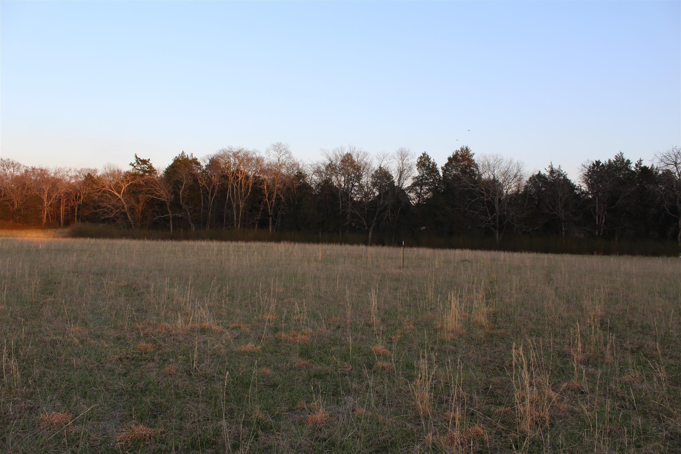 Murfreesboro Real Estate 3 Betty Ford Road TN $149 900