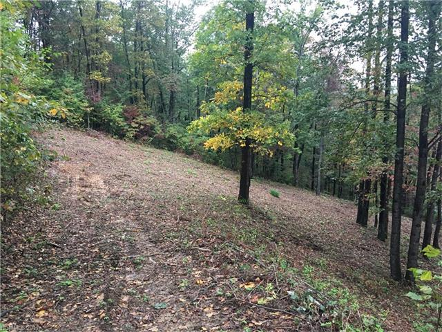 2 building lots in Lace Falls Subdivision. Combined total of 1.63 acres.  Existing 2 bedroom septic system in place. Quiet and private location with winter mountain views!