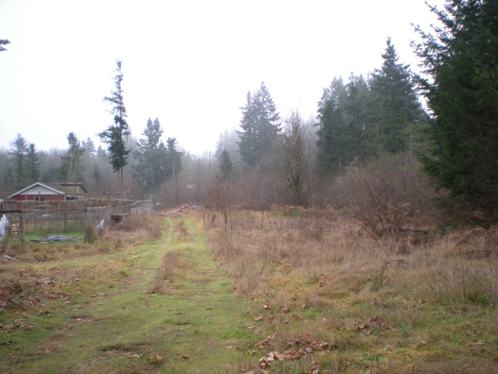 6.63 ACRES in Tumwater UGA-zoned MFM Multi-Family Medium Density Residential 9-15 units per acre.  Access to property from both Hwy 99 and 93rd.  Flat-no wetlands!  Home and metal bldg. on property