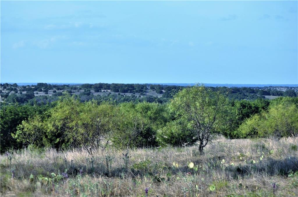 TBD County Road 611, No City, TX 76455