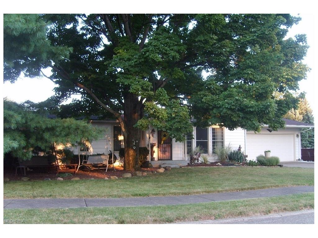 125 S Rhodes, Niles, OH 44446