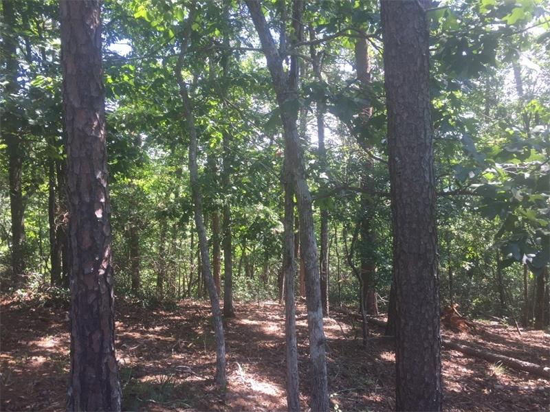 Great view! Great neighborhood! 0.87 acre lot in Achasta, North Georgia's premier golf community. Lot sits on top of Golden Bear Ridge with great views to the Southeast.Very close to the golf course and the Chestatee River. Lot has plenty of mature hardwoods and Mountain Laurel. Very close to downtown Dahlonega, and the Dawsonville shopping.