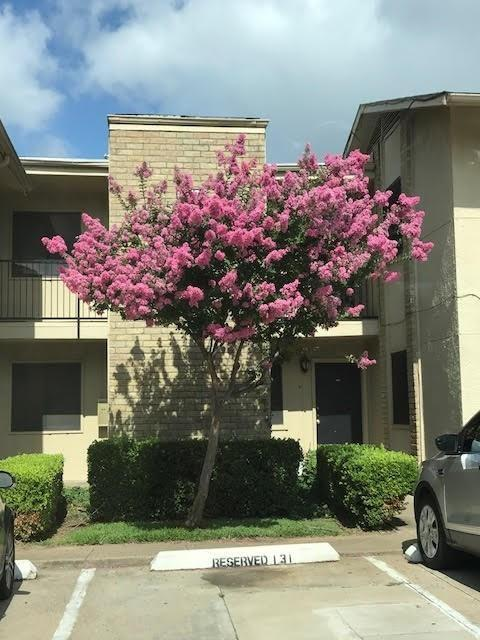 2nd floor 2 BEDROOM 2 BATH with walnut wood flooring in living, dining,hallway, slate floor in bathrooms and kitchen.Patio overlooks open area of adjoining condos;pleasant view!Corner stone fireplace. Utility Room downstairs. Great closet space!Galley kitchen with pantry. HOA Management company for more info. Current tenant is paying $900 a month which is $50-75 lower then the market asking. Excellent Investment.  Seller will allow to preview the condo with accepted offer.