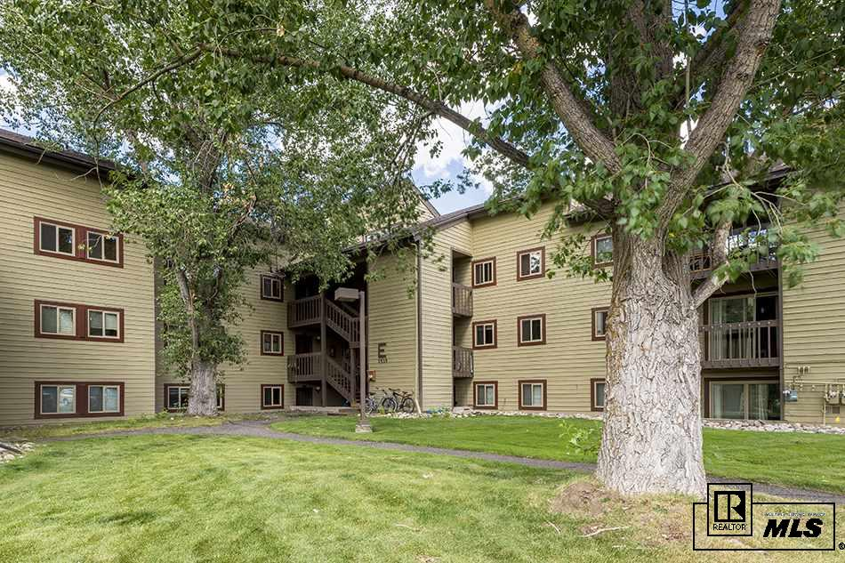 1535 Shadow Run Court, Steamboat Springs, CO 80487