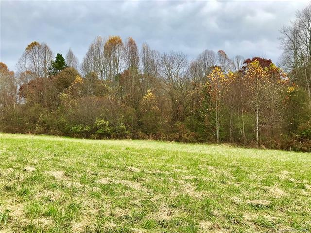 Easy build, level .98 acre homesite located in premier gated community. Amenities include a private clubhouse, pool, fishing pond, putting green, wooded walking trails and a large common area along the French Broad River with river access. Conveniently located to shopping & dining.