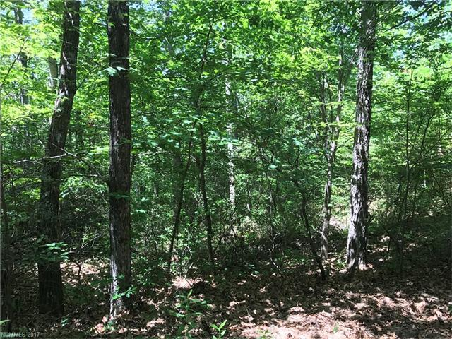Come build your dream home or mountain cabin on this beautiful 1 acre wooded homesite. Gently sloping, easy build lot with mountain views.