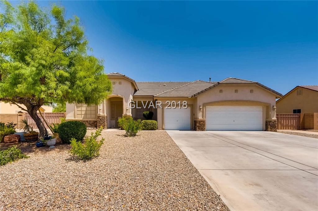 8704 HOMESTEAD Street, Las Vegas, NV 89143