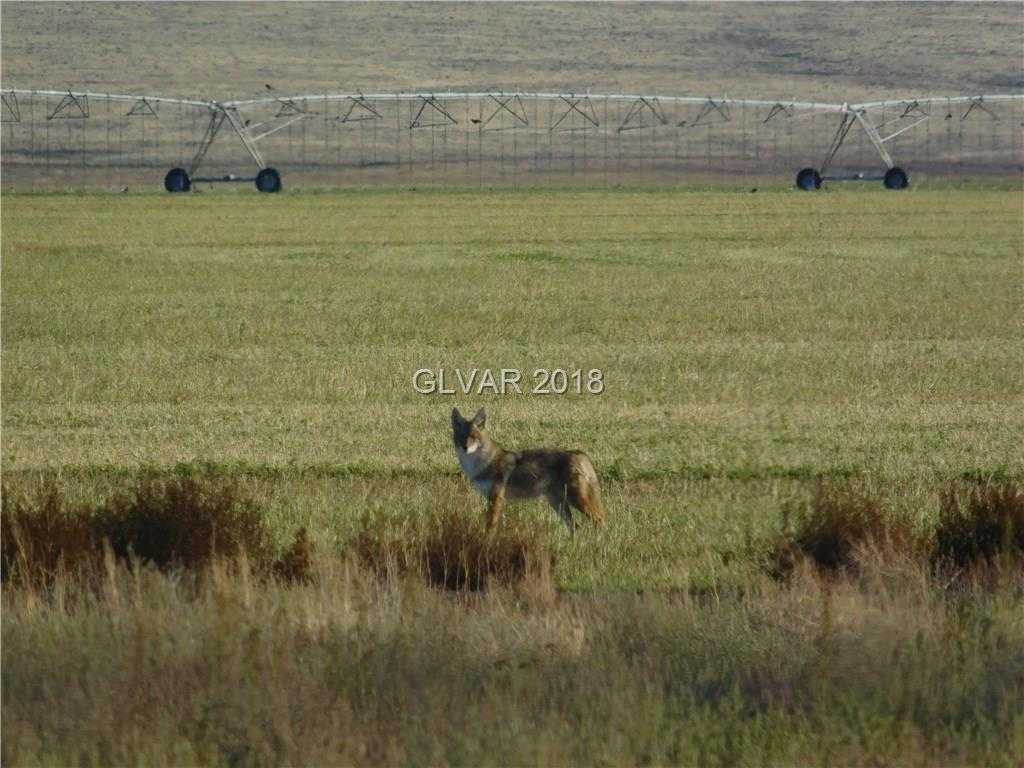 Gunderson RD Block 6 Lot 16, Other, NV 89001