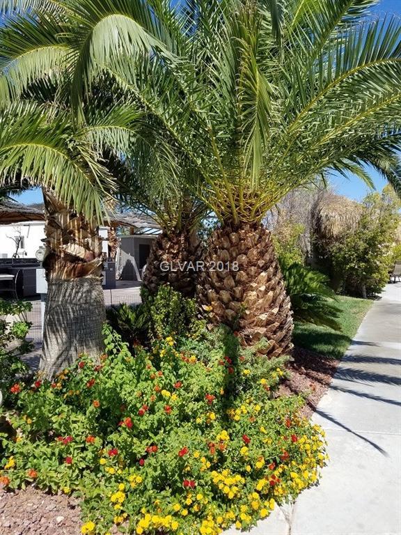 8175 ARVILLE Street 21, Las Vegas, NV 89139