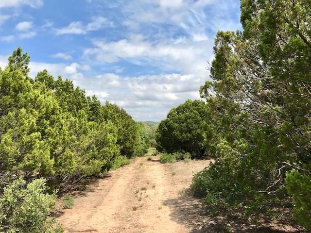 10525 County Road 463, Baird, TX 79504