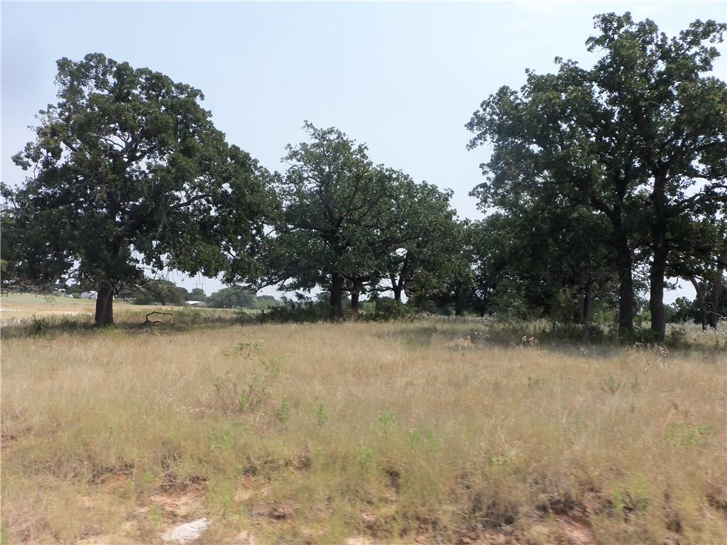 0000 Deer Park, Decatur, TX 76234