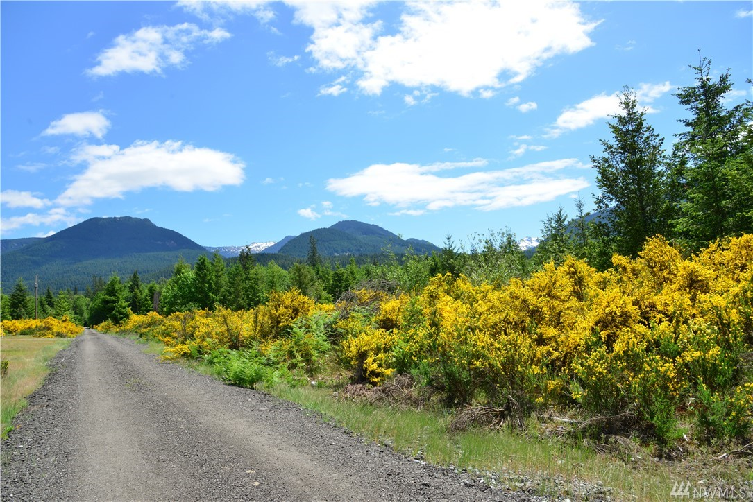 Beautiful serene, private flat 6 acres to build your dream home!  Access acreage off Cannon, so power at street.  Access to Cowlitz River and steelhead fishing.  Only 17 miles to White Pass Ski Resort and hunting locations.