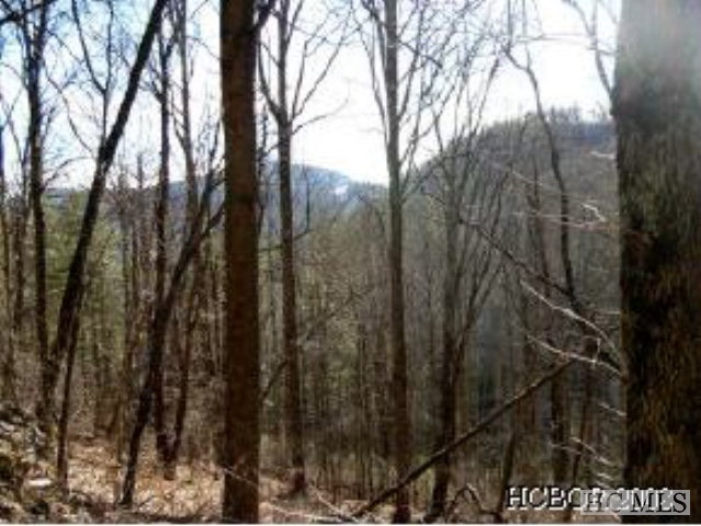 NA Flat Mountain Road, Highlands, NC 28741