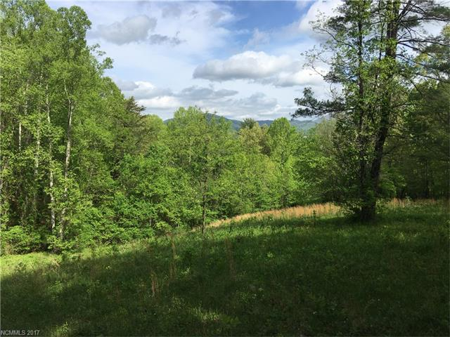 Rare large tract overlooking Cane Creek Valley & Hoopers Creek. Private road through property to level ridgetop with panoramic views. All wooded with large trees and about 3 acres pasture, springs and creeks. No mobile homes in area. Close to Cane Creek Middle School and Fairview Fire Department. Adjoining 50.89 acres available with 10 acres of pasture & paved frontage, totaling 135.22 acres.  See Mls # 3276577. Easy drive to mega shopping, airport or Asheville.  Address and taxes TBD