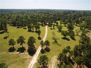 MUST SEE!  12.6 acres of ROLLING HILLS just outside Forbes Magazine #1 fastest growing City in America.  Just 36 miles from downtown Austin*24 miles from The Circuit of Americas*90 minutes to San Antonio*2.5 hours to downtown Houston*Lush green pastureland, elevation changes with mature large pine and oak trees.*additional adjacent acreage is available for purchase*a total of up to 91 acres is available*approximately 255 feet of road frontage located on a quiet country road with no through traffic.