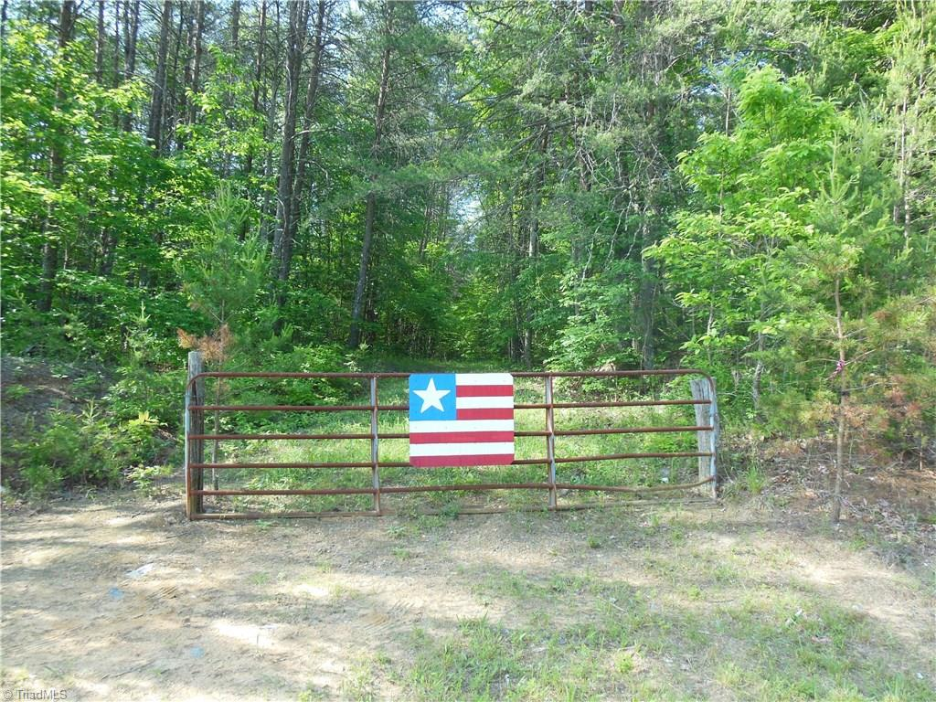 Beautiful 10.85 acre tract nestled at the foot of Sauratown Mountain. Good topo with great building sites. Rural, but just minutes to amenities and the interstate. Close to Hanging Rock State Park and Dan River. 1/2 mile from the historic Jack Martin, Revolutionary War Patriot Rock House. Previously perked.