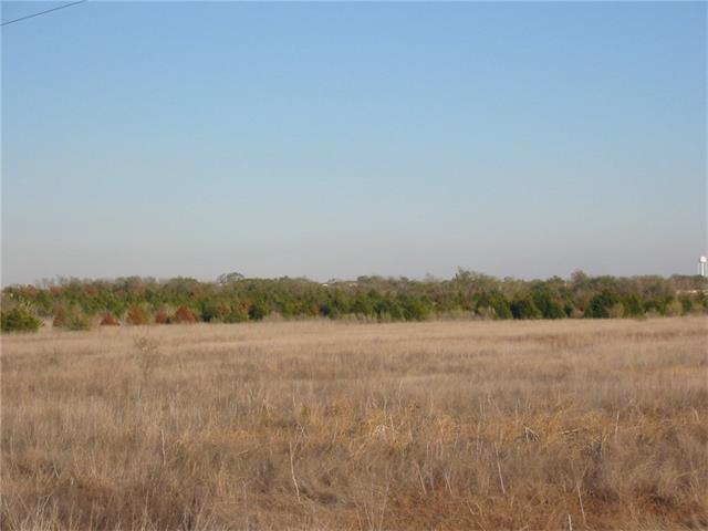 Located About 2.5 Miles from the Formula 1 Race Track and Event Facility.  Virgin Open Land.  Good Native Grass Pasture Land or Tillable Soil. Scattered Native Mesquite, Cedar & Hackberry Trees.  Wet Weather Draw Crosses Property Near Peterson Road & Another Crosses Near the Rear of the Property.