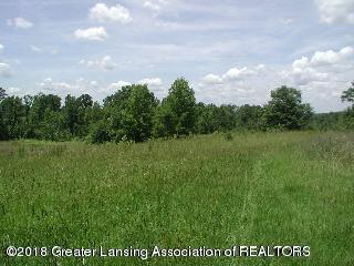 Beautiful and peaceful partially wooded acreage in the country living!  Close to Lansing, Eaton Rapids and Holt! Rolling hills, beautiful building sites! Four splits available.