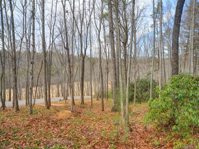 Come build your dream here in Bridgewater - A gated community that offers walking trails and a community pavilion. Lot 5 is a wooded, gently sloping, easy build site. This lot is only a short distance to the community park that features a flowing creek.