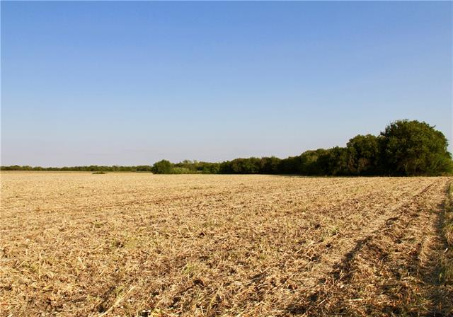 Off of FM 112, near Noack, this is 58.84 acres of rich, black farmland currently under Ag use and with a line of  large, old growth trees that run along the southern edge of the property and beside Brushy Creek. 