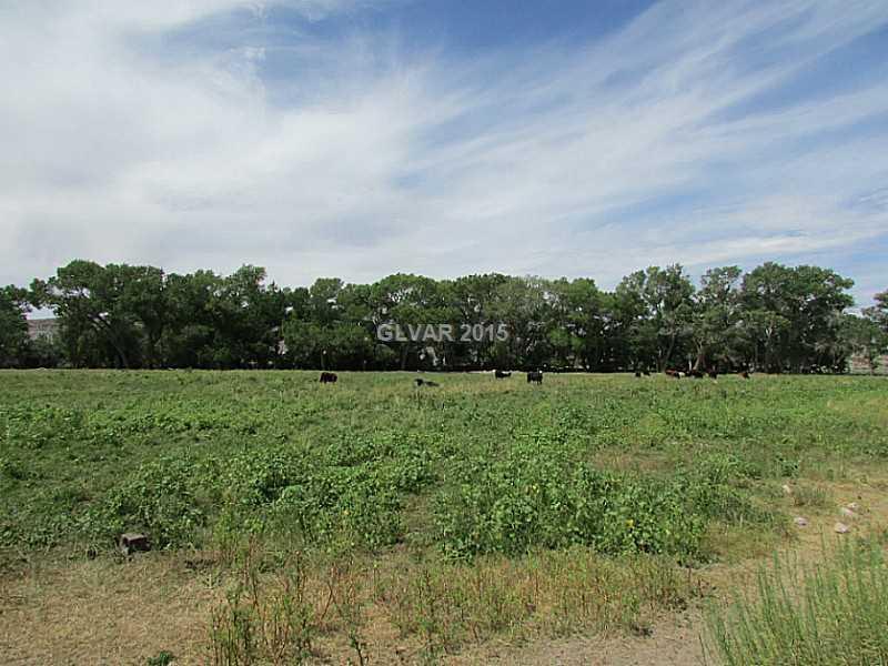 Buckhorn Ranch Road, Alamo, NV 89001