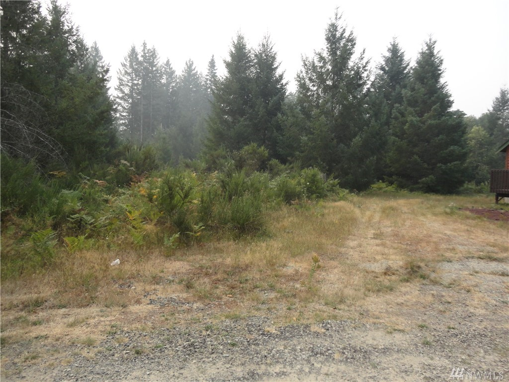 Nice building lot at end of quiet cul-de-sac in small development of Trails End.  Water and power at the street.  Will need septic system.  Community riverfront picnic area with firepit.  Beautiful views of Tatoosh range and Cascade foothills.  Close to Mt. Rainier National Park, White Pass Ski Area, and Gifford Pinchot National Forest for year round recreation and wildlife viewing.  Combine with other contiguous lots on Cottonwood Lane for larger parcel and privacy.